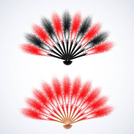 Red and black  feathers fan isolated on white background, vector illustration