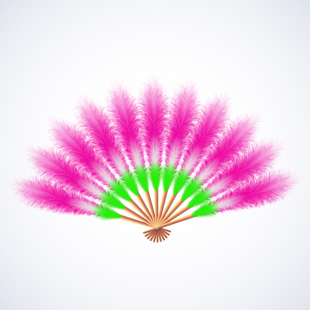 colorful feathers fan isolated on white, vector illustration Ilustrace
