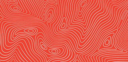 Salmon fillet texture, fish pattern. Vector background with stripes salmon.