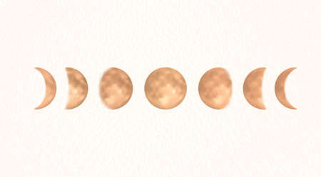 Phases of the gold moon, boho moon vector illustration, isolated
