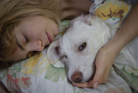close-up muzzle sleeping white cute dog and teen girl. lie together in bed on a pillow, enjoying a pleasant moment. Good morning, positive, comfort. sweet life of pets