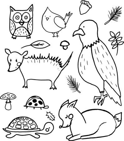A set of hand drawn cute outline forest animals. Deer, american eagle, owl, red cardinal bird, mushroom, opossum. Vector collection perfect for childish decoration clothes, patterns,stickers, cards Ilustrace