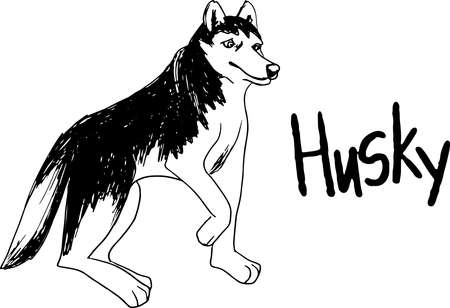 Vector siberian husky isolated on white background. Vintage hand drawn ink sketch with portrait dog.