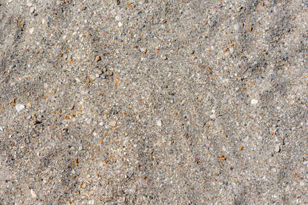 Sand background with small shells. Top view of the sandy beach. The texture of the sand. Light beige shade. The natural background.