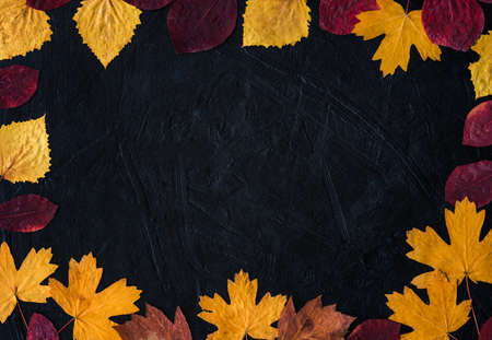 Frame of autumn leaves on a black background. Welcome, autumn. Golden leaves on a black background top view copy the space. Autumn concept. Autumn minimalism.
