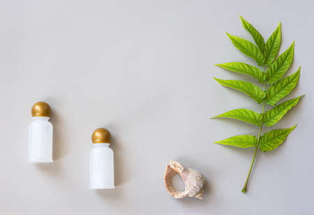 Natural cosmetics. Two bottles for oils, gels or shampoos. Still life in natural shades. Seashell and green leaf on a light beige background. Natural discreet design with space for text.