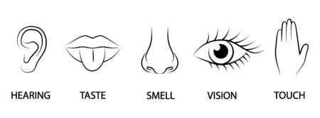 A set of five human senses, Ear, mouth, nose, eye hand Ilustração