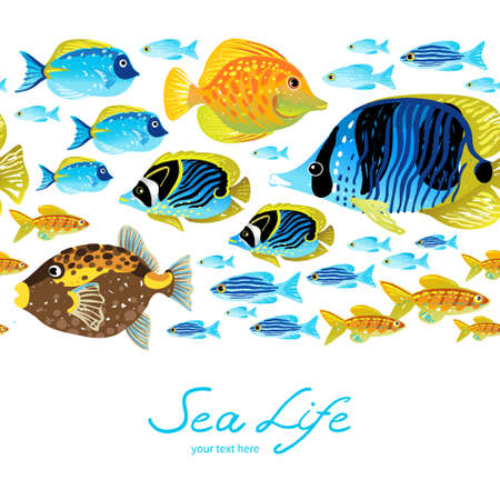 Horizontal seamless sea border. Colorful tropical fish. It can be used for wallpaper, pattern fills, web page background, surface textures, decoration for bags and clothes. Vector