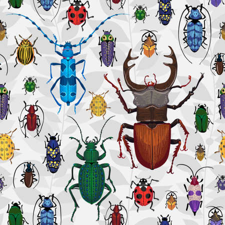 colorful bugs Insect on the background with gray leaves Vector