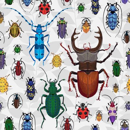catarina caricatura: insectos coloridos insectos en el fondo con hojas grises