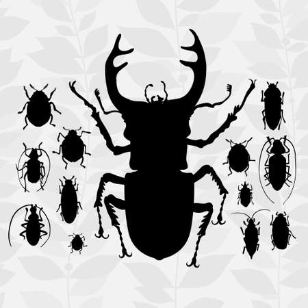 cartoon bug: silhouette of bugs Insect on the background with gray leaves