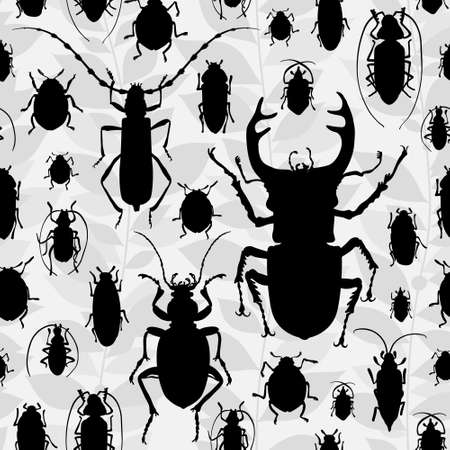 invertebrates: silhouette of bugs Insect on the background with gray leaves