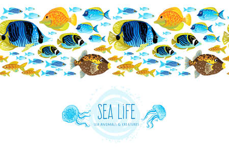 Horizontal seamless sea life border. Ocean pattern with colorful tropical fishes. Bright marine decor for wallpaper. Blue summer background. Maritime illustration.
