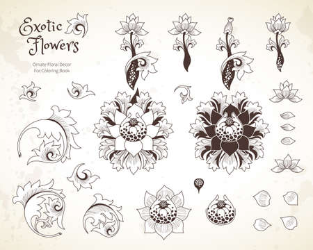 graphic art: Vector set with fantastic exotic flowers in Chinese style. Luxury ornament. Outline floral illustration. Ornate graphic art. Botanical element, vignettes, flowers and leaves for design template.