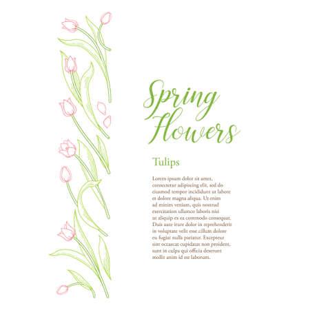Vector line art floral border, frame of blooming spring flowers. Tulip flower backdrop. Symbol for Womens Day, Mothers Day. Tulips pattern. Design linear artwork element for card. Springtime