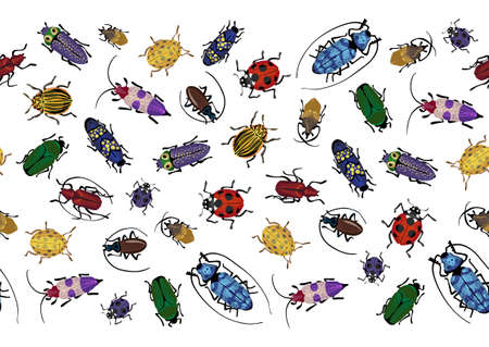 Vector seamless pattern, border with colorful bugs. Bright handdrawing of small and big beetles. Insects isolated on the white background. Cartoon cute bugs wallpaper.