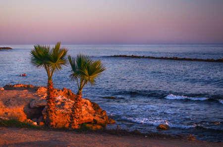 Landscape of paradise tropical island beach with palms and rocks Фото со стока