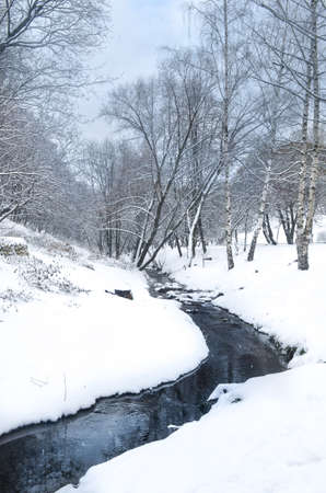A Snow Covered Stream In The Forest Stock Photo