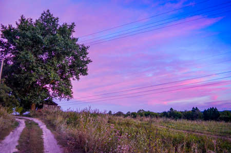 Scenic countryside landscape at sunset in purple hue