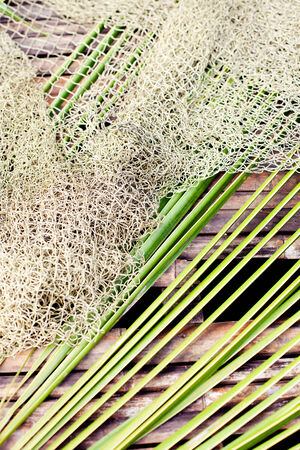 Wooden tropikal  background with fishing net and palm leaves photo