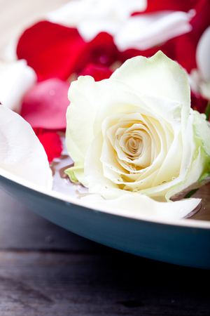 redolence: Rose flower petal and buds in water with drops on flowers in a wooden blue bowl on a wooden background
