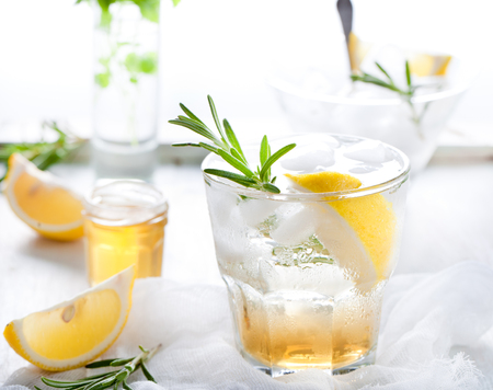 fizz: Gin,lemon, rosemary fizz, cocktail with honey and fresh herbs