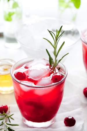 fizz: Cranberry, rosemary, gin fizz, cocktail on a white background