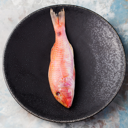 grey mullet: Raw fish, Red mullet fish on a black plate on a grey stone background. Stock Photo