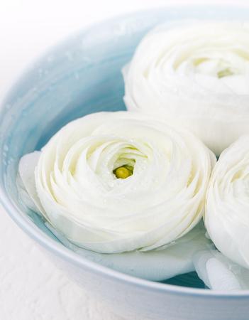白のラナンキュラスの花をフローティングします。スパ ウェルネス背景