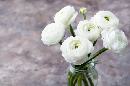 kinfolk: White ranunculus flowers in glass vase Grey background Copy space Stock Photo