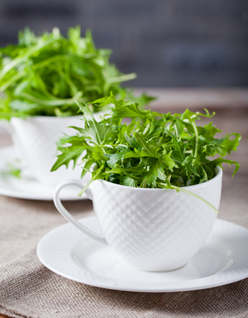roquette: Fresh green arugula in white cup on wooden table. Stock Photo