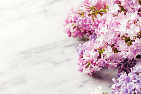 Lilac flowers on marble background. Copy space. Imagens