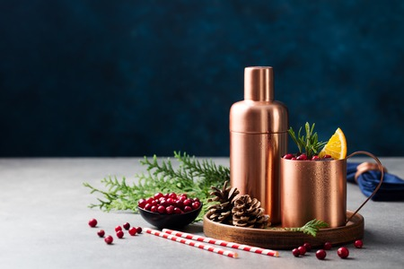 Moscow mule cocktail set, Christmas and New Year holiday drink. Copy space. 免版税图像