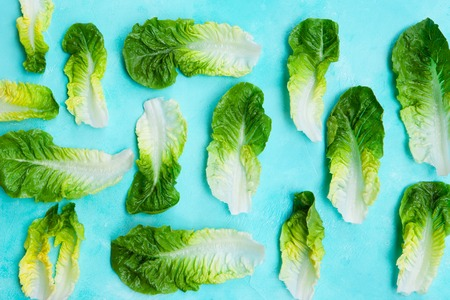 Romaine lettuce salad leaves on blue background. Top view. Copy space. Stock Photo