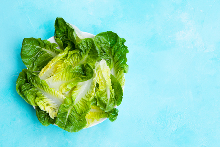 Romaine lettuce salad on blue table. Top view. Copy space.