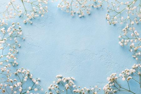 Frame of white flowers, gypsophila.