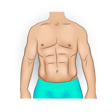 Realistic vector illustration of a man with strong slim body and pumped abs.