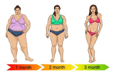 Evolution of the female body Stock Illustratie