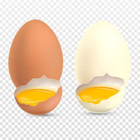 Yolk Realistic chicken eggs