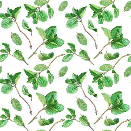 Mint Pencil Drawing Seamless Pattern