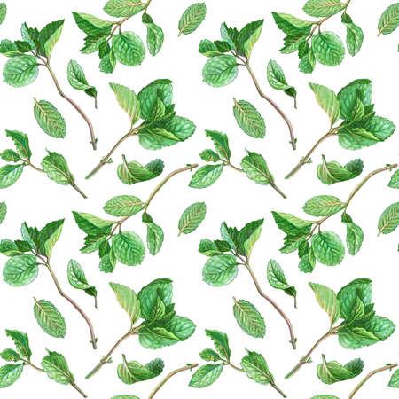 Mint Pencil Drawing Seamless Pattern