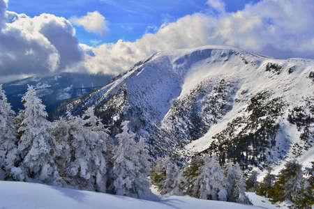 Bellissimo inverno soleggiato nelle montagne di Krkonose. Archivio Fotografico