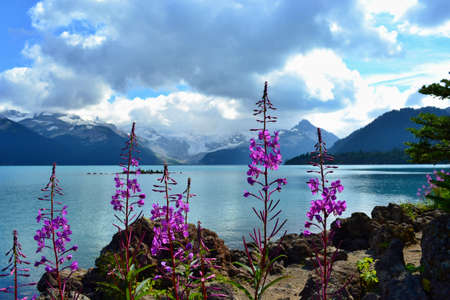 Beautiful blue Garibaldi Lake surrounded by high mountains covered with glacier. Stone pyramids in lake. Sunny day, blue sky, white clouds. Stock Photo
