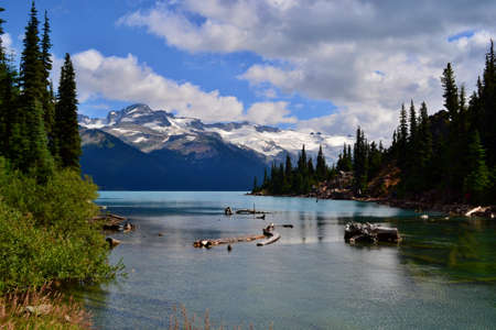 Beautiful blue Garibaldi Lake surrounded by trees and mountains covered with glacier. Blue sky, white clouds, green trees, branches in the water.