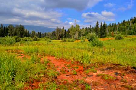Mineral springs in Kootenay National Park, Canada. Beautiful colorful green and orange ground, blue sky with white clouds.