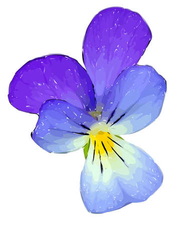 Vector illustration of violet flower isolated on white background. Violet bloom with black outline and yellow and green middle.
