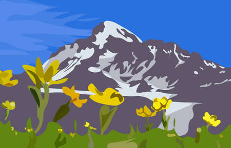 Beautiful Kazbek mountain with yellow flowers in the foreground. Vector illustration.