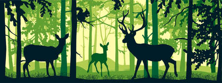Horizontal banner of forest landscape. Deer with doe and fawn in magic misty forest. Squirrel on branch. Silhouettes of trees and animals. Green background, illustration. Bookmark. Ilustración de vector