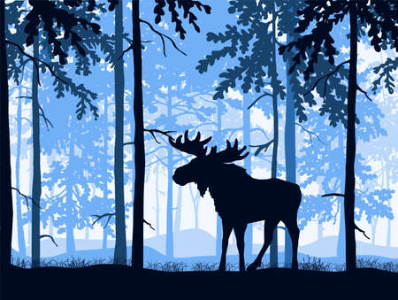 Moose with antlers posing, forest background, silhouettes of trees. Magical misty landscape. Blue illustration.