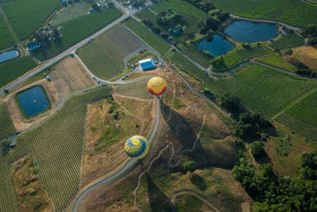 Aerial shot of multicolored hot air balloons landing in vineyards in Napa Valley, California